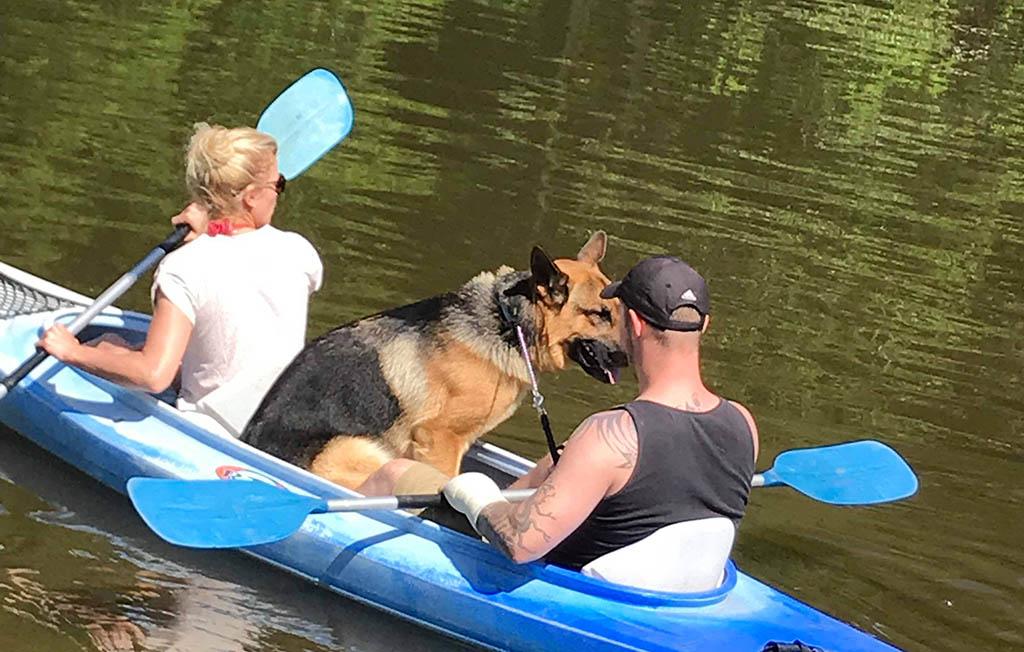 'Kayak